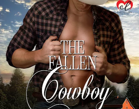 The Fallen Cowboy Cover